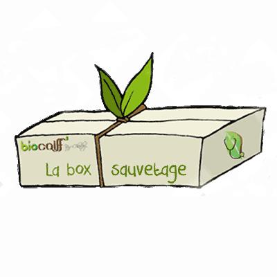 box sauve trans