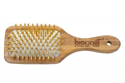 brosse en bois de bambou