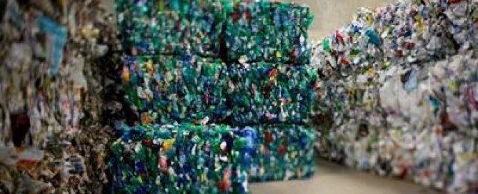 Contre le plastique, une entreprise invente des assiettes en feuilles