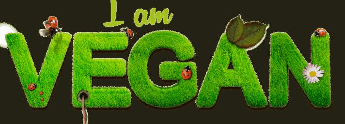 Des produits cosmétiques vegan à 100%