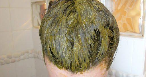 couleur sans ammoniaque 100% végétale
