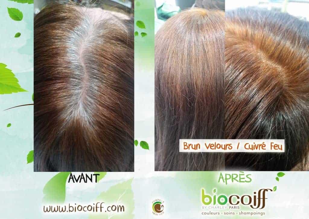 colorations végétales couverture cheveux blancs exemple