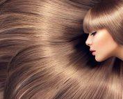 huile pour hydrater les cheveux