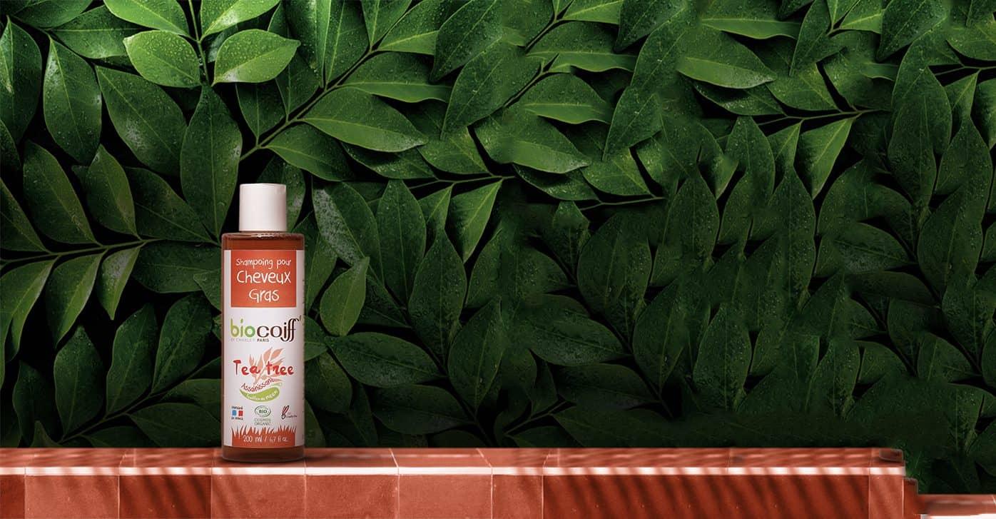 shampoing au tea tree