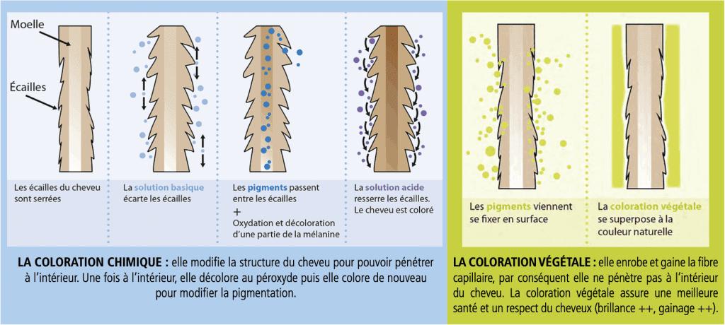Différence coloration. végétale / coloration chimique