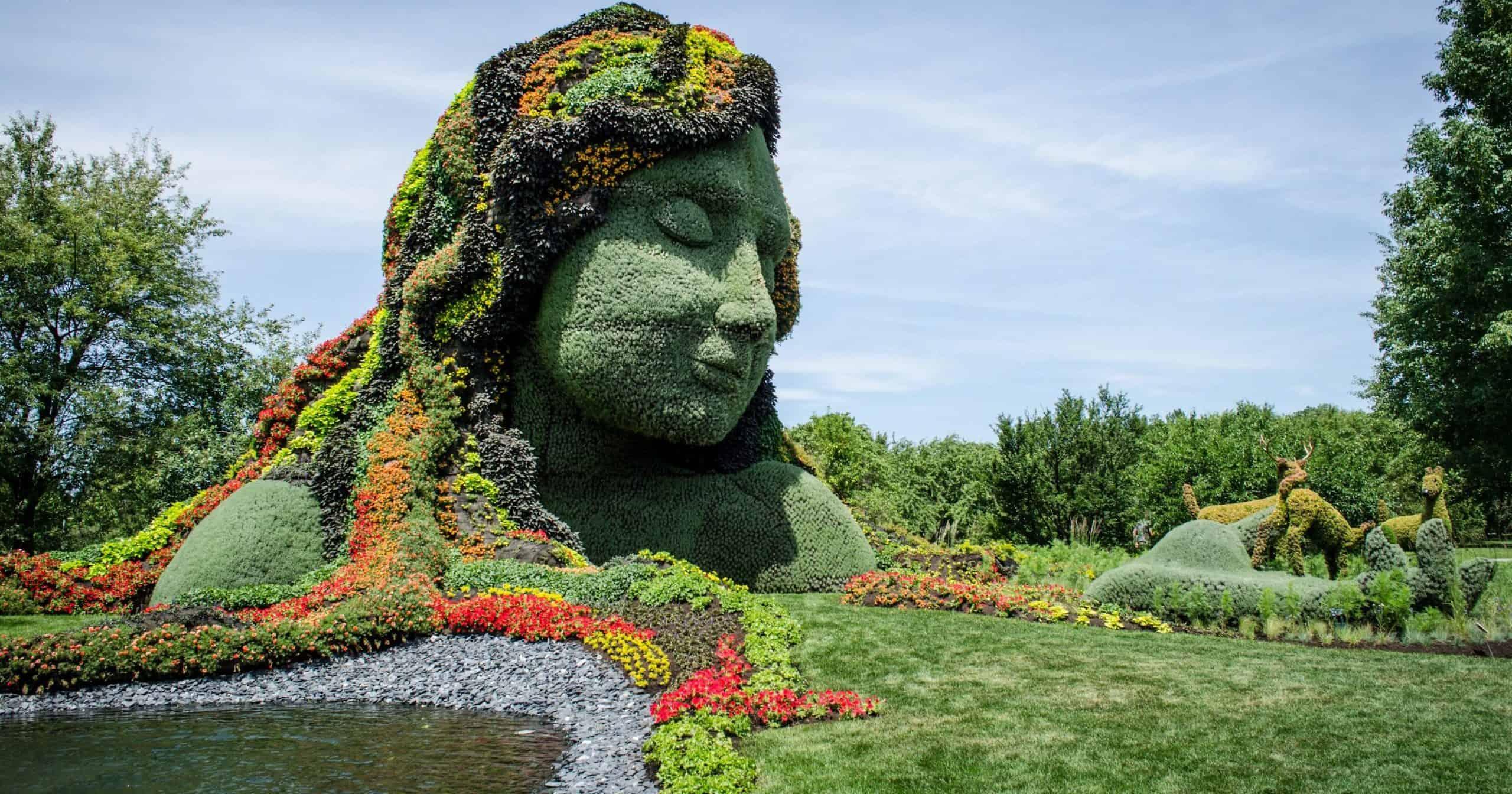 Femme cheveu en plantes