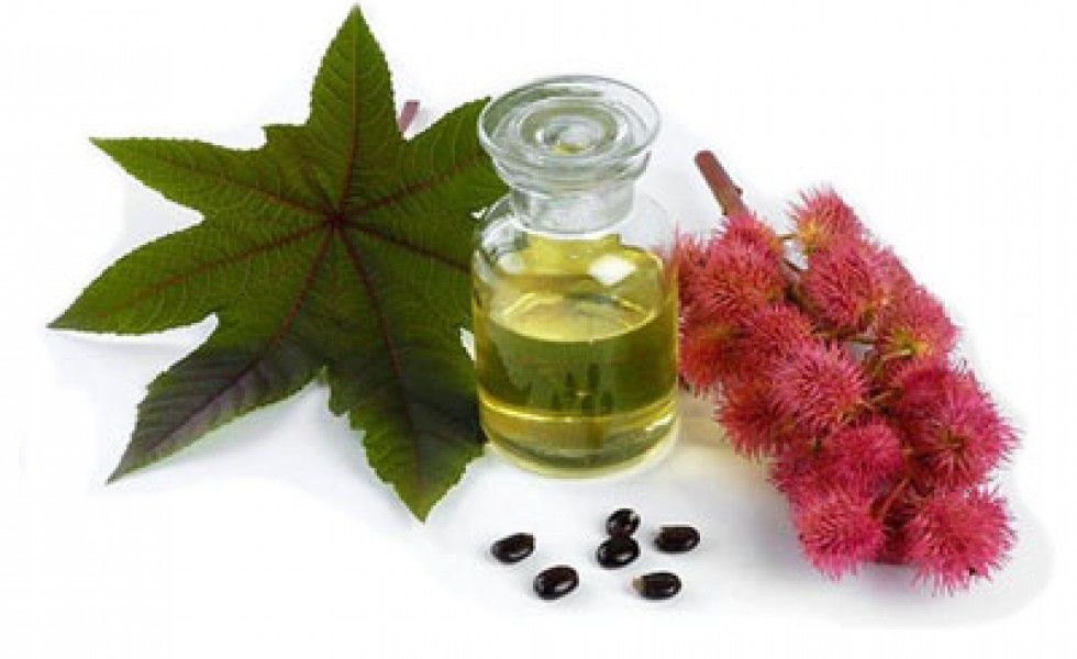 huile de ricin capillaire